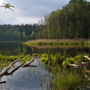 Hubert Jasionowski_ jezioro Ratajki