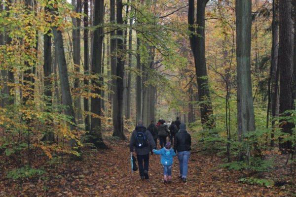 Zapraszamy naspacer krajobrazowy poOlsztynie